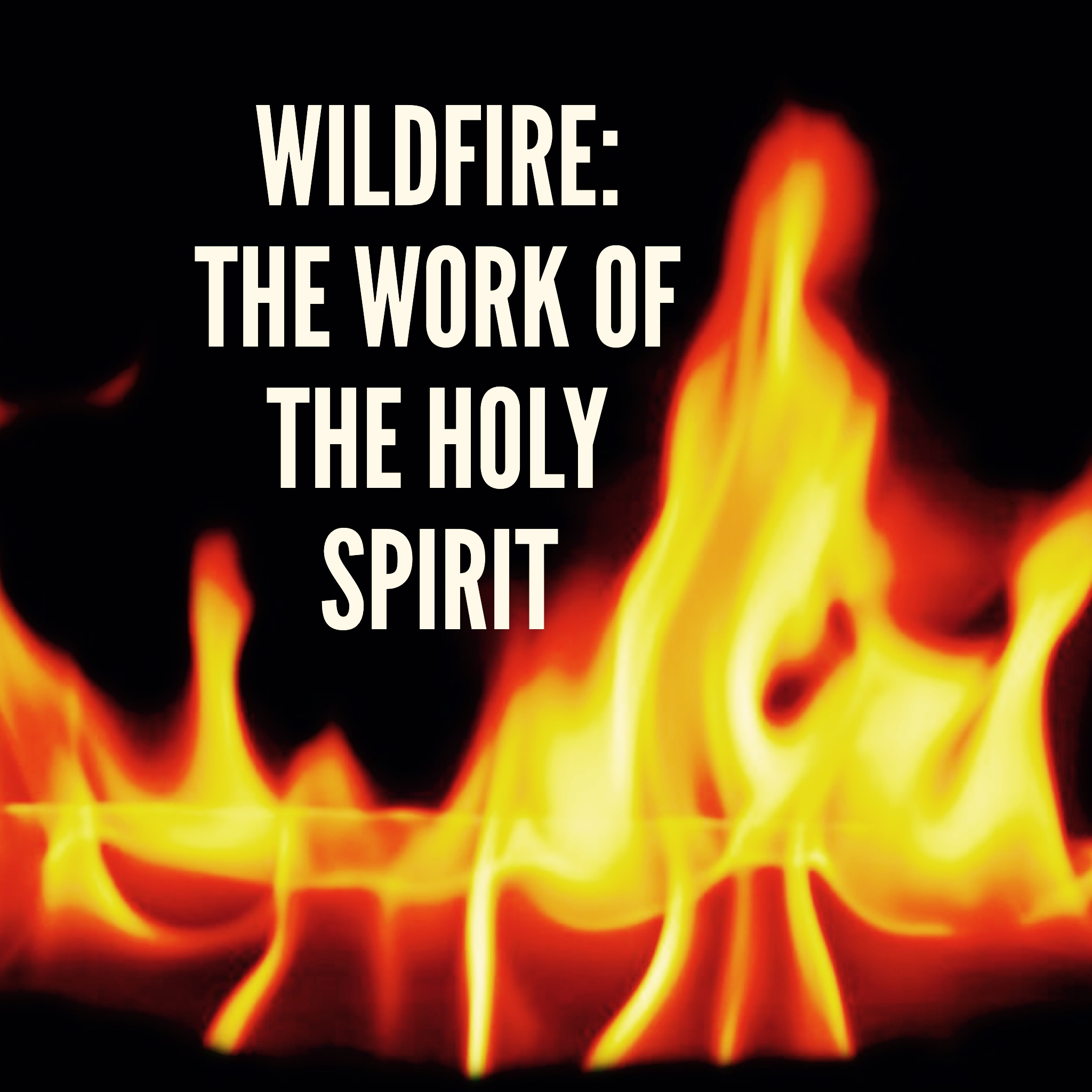 Wildfire the work of the holy spirit unashamed study notes chapter 30 the work of the holy spirit thecheapjerseys Gallery